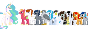 MLP Sizing Chart - Flat by outlaw4rc