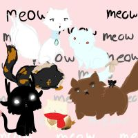 Cats Cats Cats Cats Cats by AskColeTheFaun