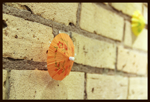 Parasol Wall by Rekyt