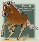Mustang Mare Adoption 7 by JNFerrigno
