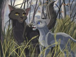 Yellowfang and Cinderpaw. by gasuaska