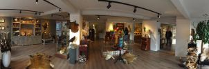 We have a new and bigger taxidermy shop! by Museumwinkel