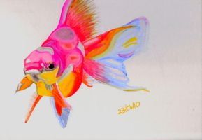 Watercolour fish XD by Tammyyy