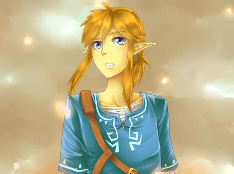 The new Link... I think by ChocoGumi