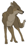 Coywolf Commission by IlukaBeach