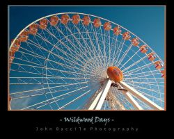 Wildwood Days II by barefootphotography