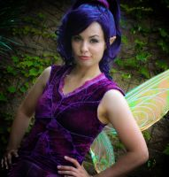 Pixie Hollow: Vidia's attitude by KoriStarfire