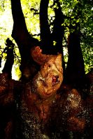 Epping Forest: Tree Spirit by Coigach