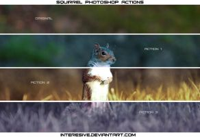 Squirrel - Actions by interesive