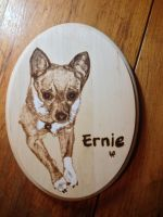 Ernie by H20dog