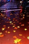 Autumn in the City by Awstein