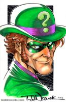 Riddler by ToddNauck