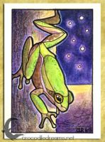 ACEO-ATC: Squirrel Treefrog by crocodiledreams