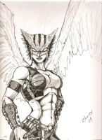hawkgirl by WickedArtworks