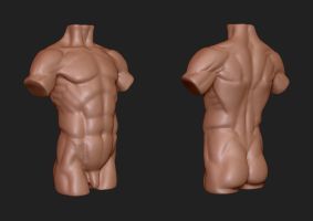 Male torso study by XanShadowsong