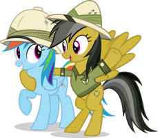 daring do and rainbow dash by MR4653