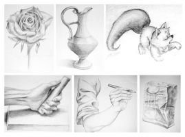 Still Life Pencil Drawings by sweetcivic