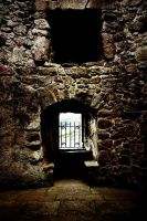 Orchardton Tower: interior1 by Coigach