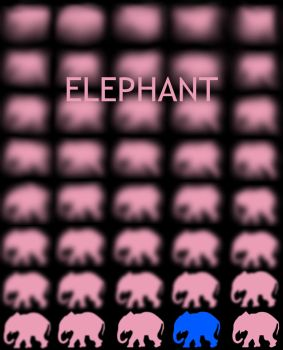 Elephant by looke