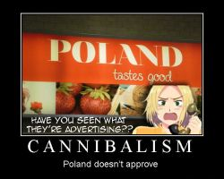 APH: Poland Poster by Gemema537