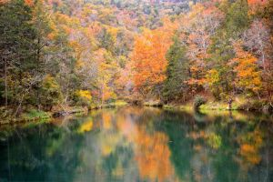 Colors of Fall in the Ozarks by tracykenefick