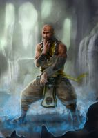 Diablo 3 - The Perfected Monk by mansarali