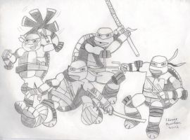 2012 Teenage Mutant Ninja Turtles by FlowerPhantom