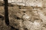 A Dying World - Sepia by lapis-lazuri