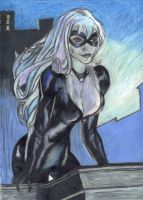 Black Cat by hawkeye