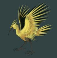Rough Zapdos by Firequill