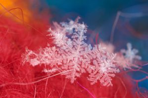Red Blue Flakes by crimsonpenguin