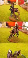 Dark Eldar Beastmaster Conversion (Sarval Hellyx) by Asurael-Returns