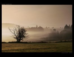 Foggy Morning by Westik