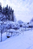 winter bridge stock 4 by conceptually