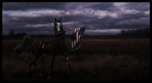 the patriot by skies-will-fall