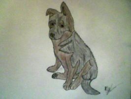 Art trade: German Shepherd by KayceeMuffins