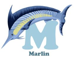 M is for Marlin by RSImpey