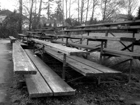 Bleachers by musicismylife2010
