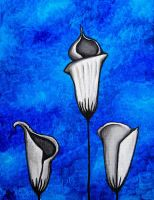White calla lilies on blue by RedRowanDesigns