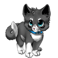 Kitten Draw To Adopt :CLOSED: by Okami-Heart