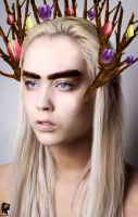 Thranduil, the king of elves. by xJNFR
