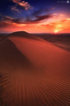lines of nature by sultan-alghamdi