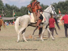 Hungarian Festival Stock 046 by CinderGhostStock