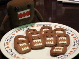 Domo kun biscuits by iverlacsa