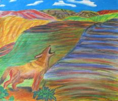 Coyote Colors by Dmims