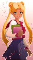 Sailor Moon contest by mishelin