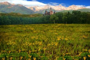 Field Of Yellow Flowers by thefantasim