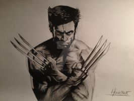 Realistic Wolverine by ManciniLand