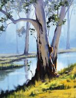 riverside gums by artsaus
