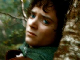 Frodo Wallpaper by Elijah-Jordan-Wood